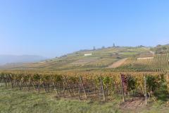 Alsace med Cathriine og Karsten.