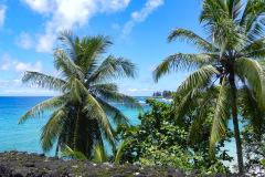 På.tur ad den berømte Road to Hana på vej til, du gættede det, Hana, Maui, Hawaii. Hvis man har tendens til køresyge, så overvej lige en ekstra gang, for vejen er snoet, meget snoet, og meget lang, men man belønnes med smuk natur hele vejen.