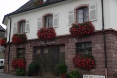 Besøg og smagning hos Rolly Gassmann, Rorschwihr, Alsace, Frankrig