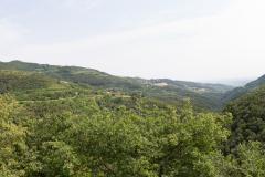 Besøg hos Tenuta Chiccheri, Tregnago, Veneto, Italien