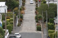 Baldwin Street, Dunedin, South Island, New Zealand. Den stejleste gade i verden, eller en af dem