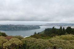 Udsigt fra Signal Hill Lookout, Dunedin, South Island, New Zealand