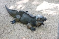 Australia Zoo, Queensland, Australien. Alt i reptiler, meget store og små.