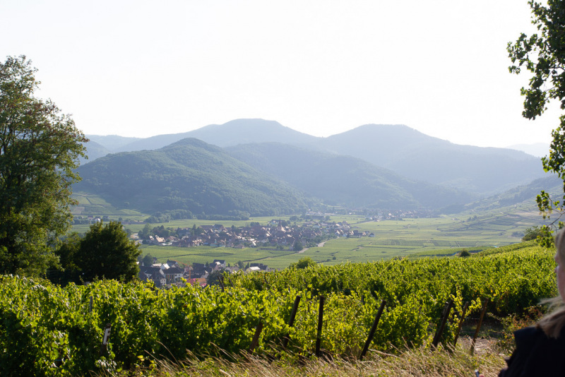 Skønne dejlige Alsace