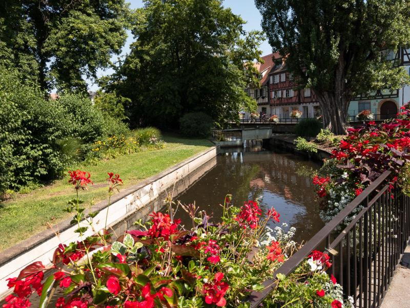 Colmar i Alsace