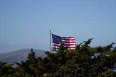 Udsigt fra Telegraph Hill ved Coit Tower, San Francisco, USA