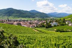 Grand Cru Brand, Turckheim, Alsace